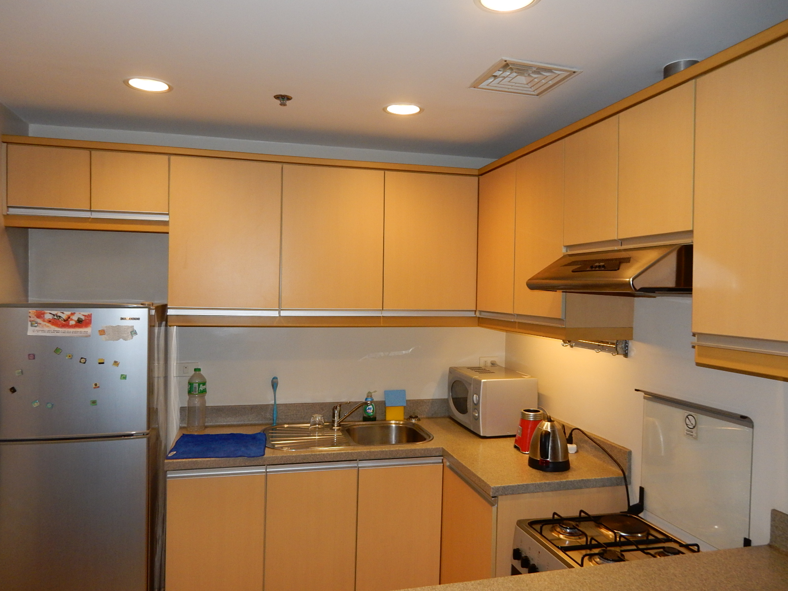 Greenbelt 1 Bedroom FOR SALE Condo in Makati near Park
